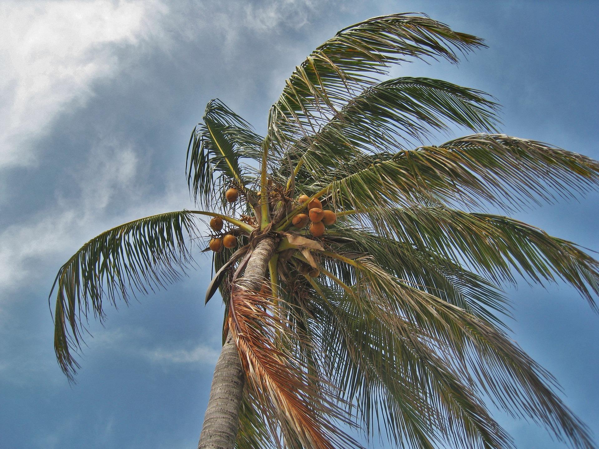 4 Reasons It S Time To Prepare For Hurricane Season Max