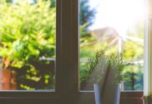 View of beautiful greenery outside of a stylish impact window